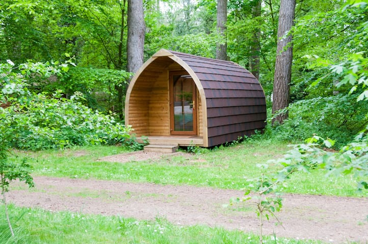 Pod in the forest - Shadwell - Stuga