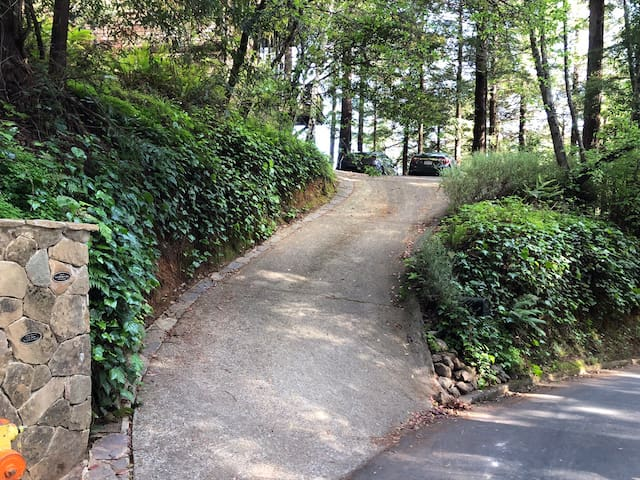 Our driveway, Dipsea steps (Middle of three sets) to the left.