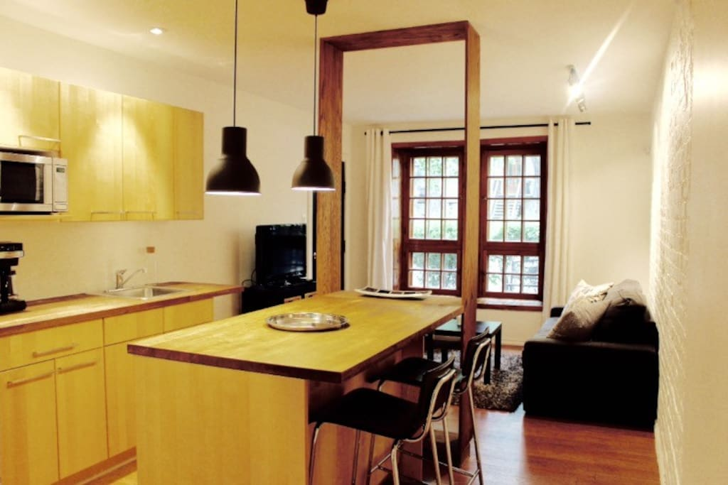 Best Location Plateau Mont Royal Apartments For Rent In