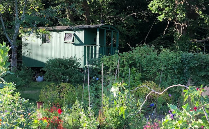 Traditional Shepherd's hut, New Forest