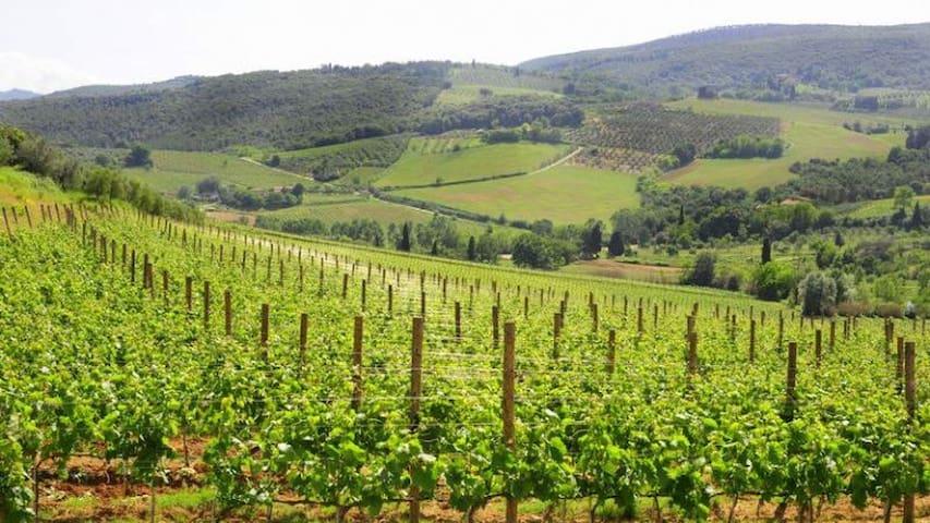 Monolocale sulle colline Toscane - Marti - Leilighet