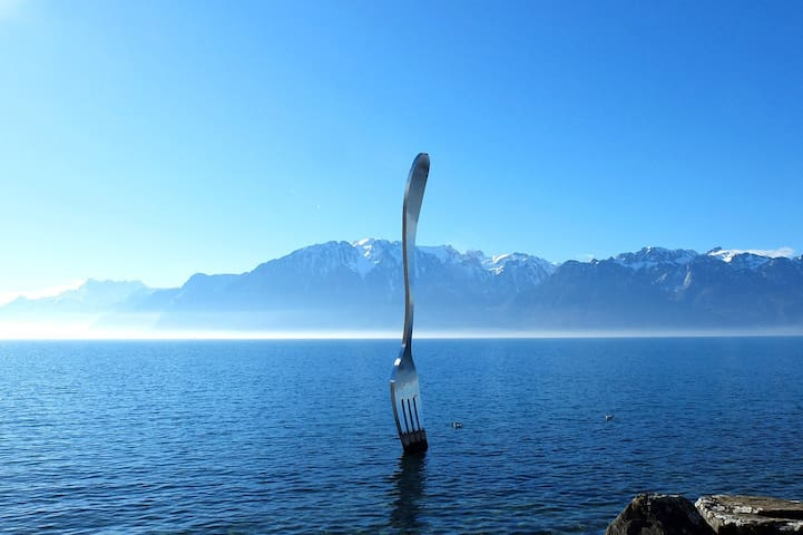 Home sweet home (2 rooms, 3 people, Vevey center)