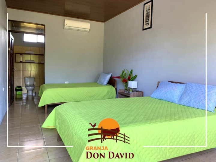 """Tortuguero """"Don David"""" Eco Friendly Farm"""