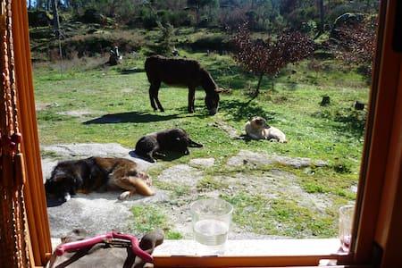 Quinta da Nanatureza  ideal retreat