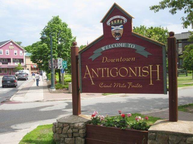 The Best of Antigonish
