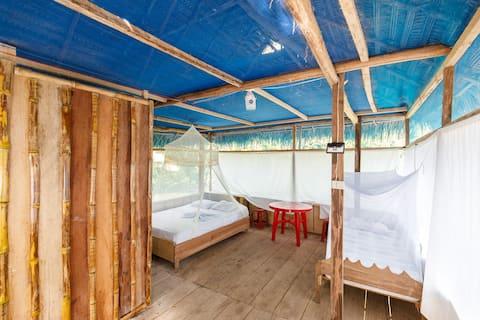 Red Uakari Jungle Tours