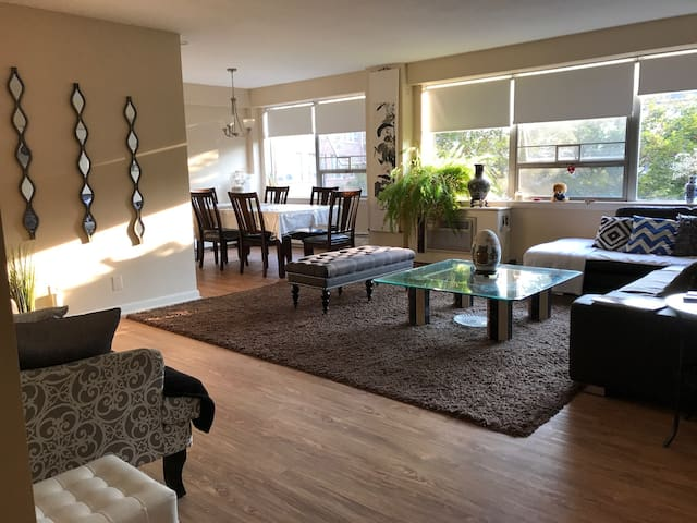 1 Bedroom in a nice apartment at Chestnut Hill