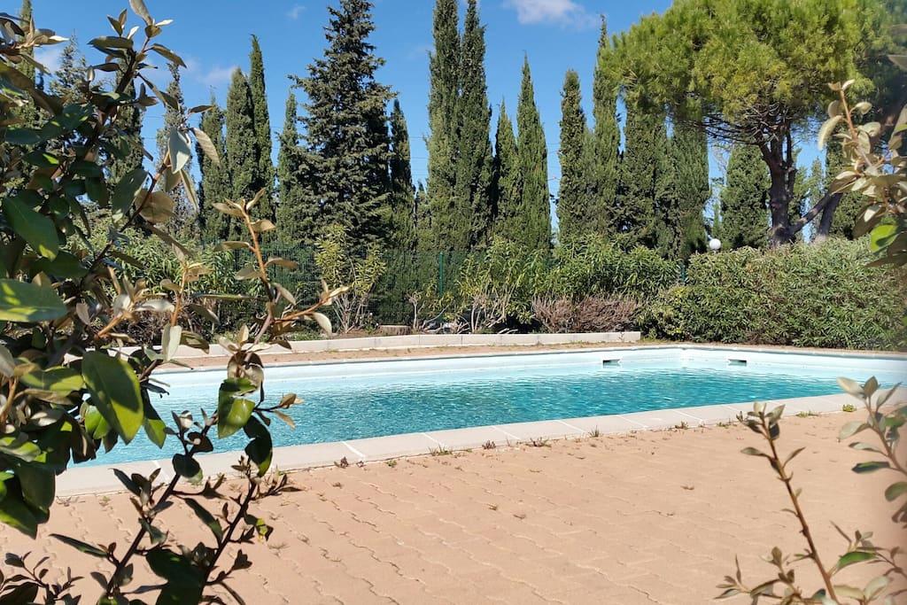 Maison jardin piscine ouv 1er juin au 30 sept houses for Piscine sanary