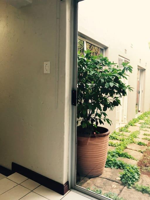 Sliding door to the garden from the room.
