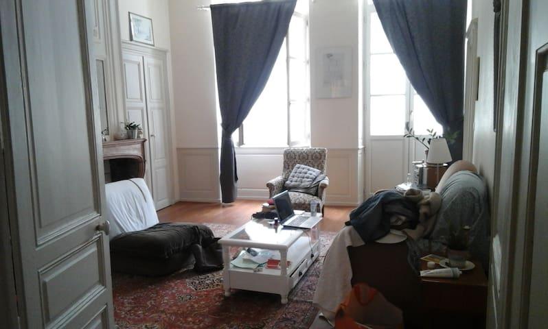 Appartement ancien rénové en plein centre ville - Chalon-sur-Saône