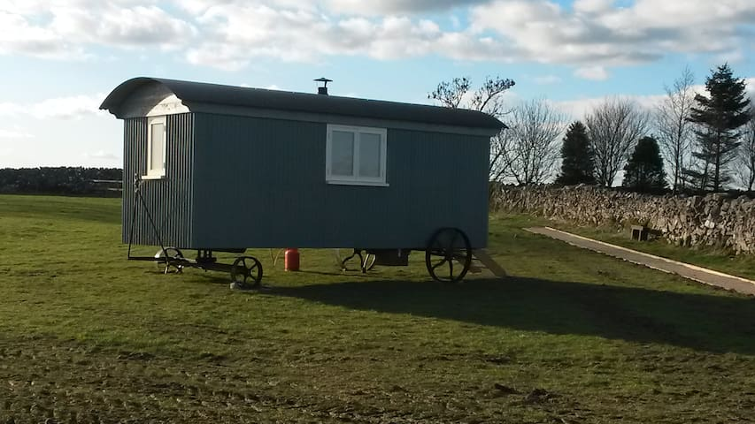 Shirley Shepherds Hut at Lowes Farm - Grindon - 小屋