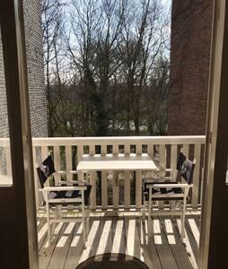 Amsterdam apartment at Vondelpark - Amsterdam - Wohnung