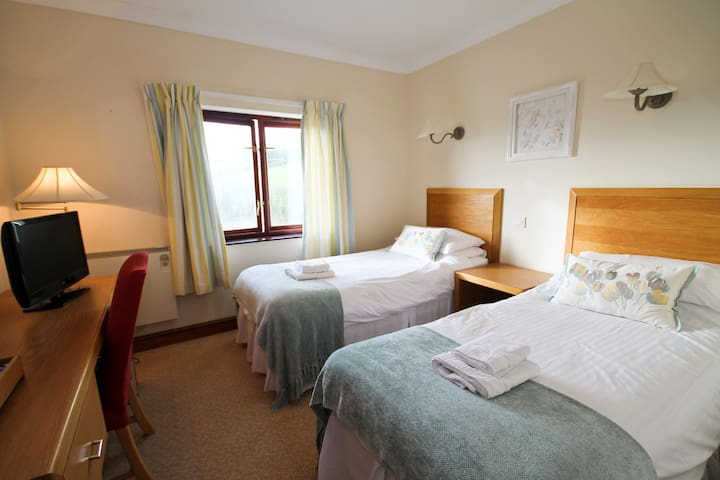 Llety Ceiro Country Guest House Twin Room