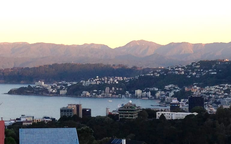 Sunny, harbour view, close to city 2 - Wellington - Bed & Breakfast