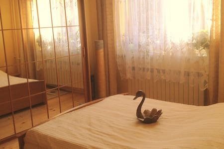 cozy room at the Swan - Rumah