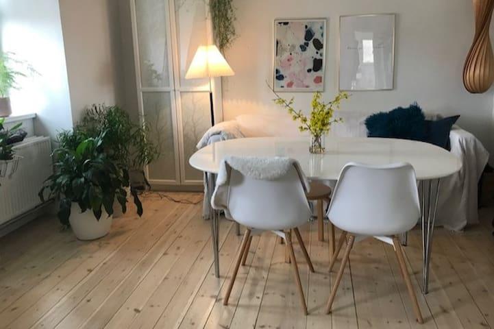 Hyggelig lejlighed i Valby