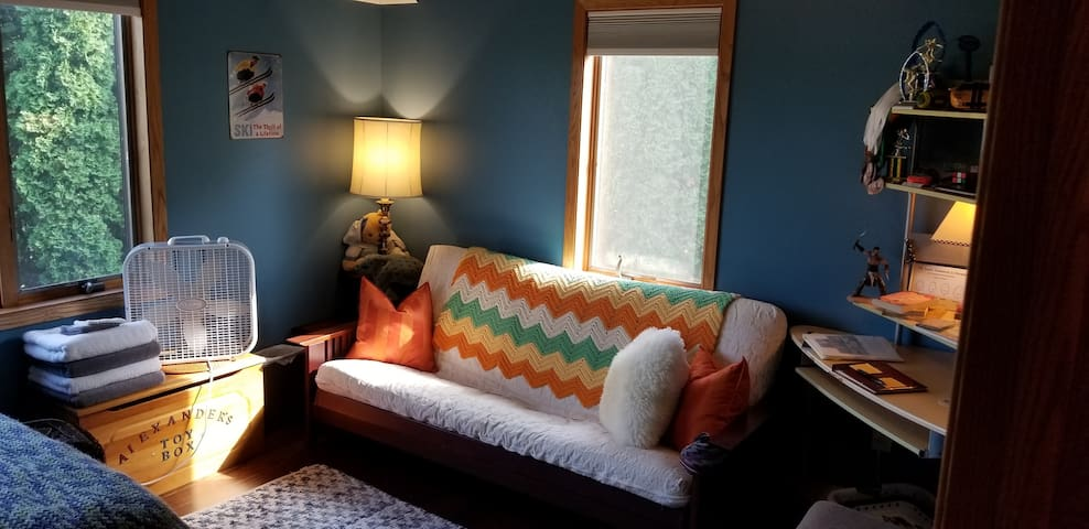 The futon and South facing window behind it. This can be made up into a bed for additional guests.