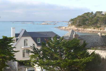 TREBEURDEN Appartement face à la mer