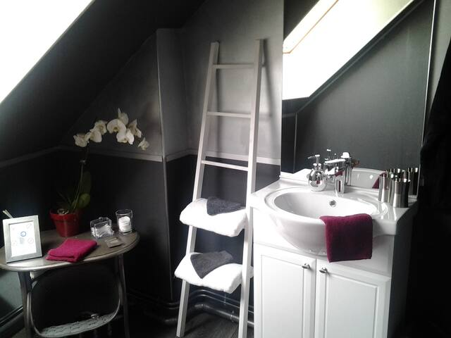 "Chambre "" Andréa"" en Champagne - Brugny-Vaudancourt - Bed & Breakfast"