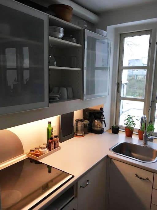 Cosy little kitchen with coffee machine, stow, combi-oven and a large fridge with freezer.