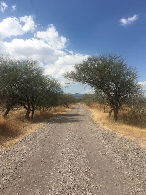 Camino de aprox. 1 Km (de la carretera Celaya-Salvatierra, hacia la casa)