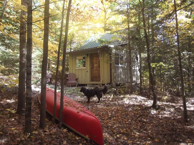 Off-the-grid Tiny Cabin.  Relax, Retreat, Recharge