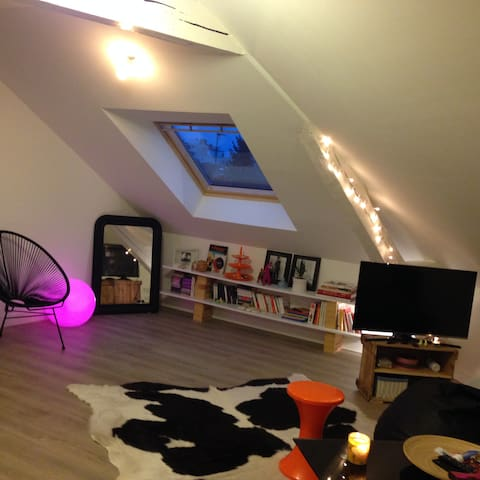 Beautiful appartment in the city - Le Mans - Leilighet