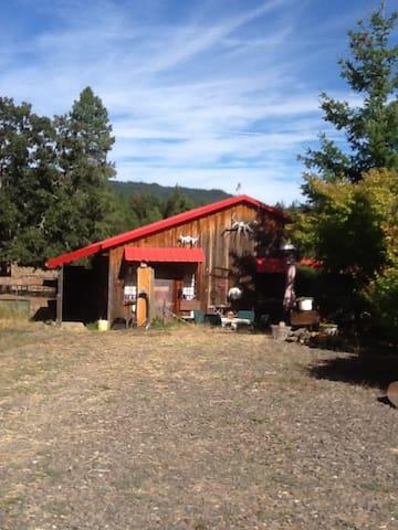 Rustic Cabin Getaway - white salmon  - Hytte