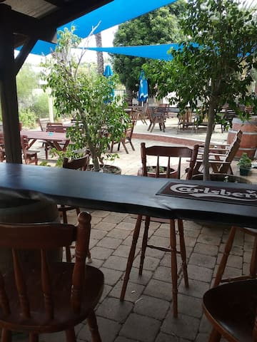 outside bar and beer garden, pet friendly on a leash