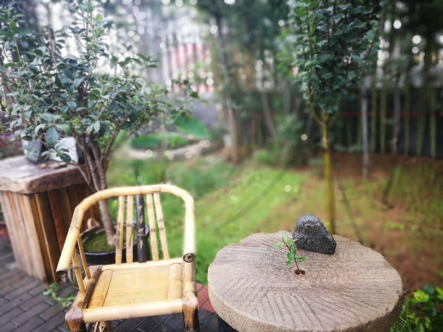 竹椅清茶花不语