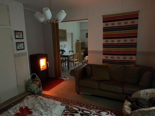 Small fireplace between bedroom and livingroom.