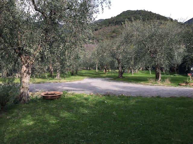Casa Agnano - Agnano - Apartment
