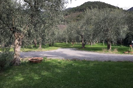 Casa Agnano - Agnano - 公寓