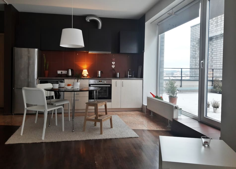 Kitchen/dining room/living room/terrace - very spacious but really cozy.