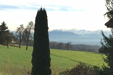 Spectacular Serviced Apt. w view of the Swiss Alps - Oberwil-Lieli - Apartmen perkhidmatan