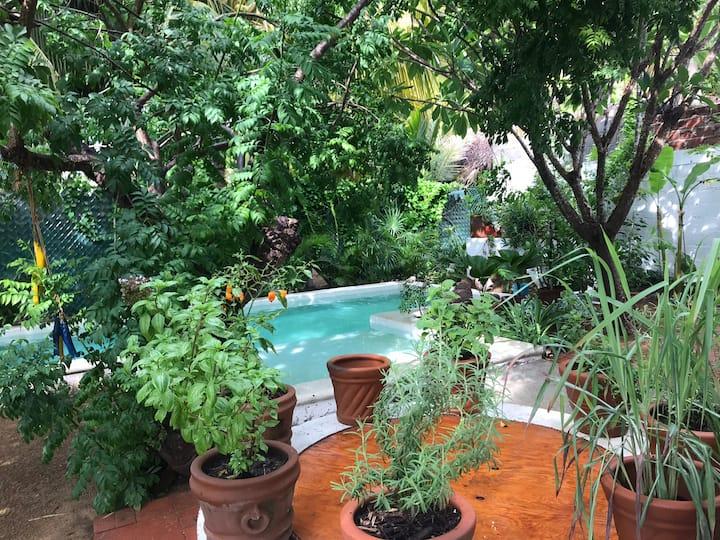Casa de Barra , nurturing, family and friends.