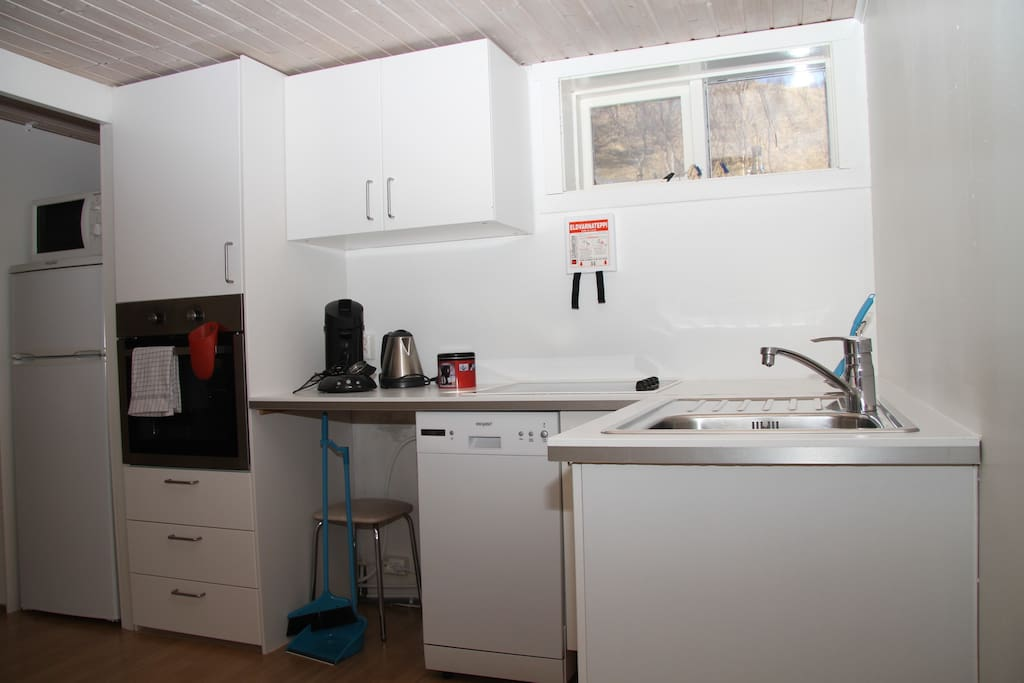 Kitchen with fridge, microwave, conventional oven, stove and dishwasher