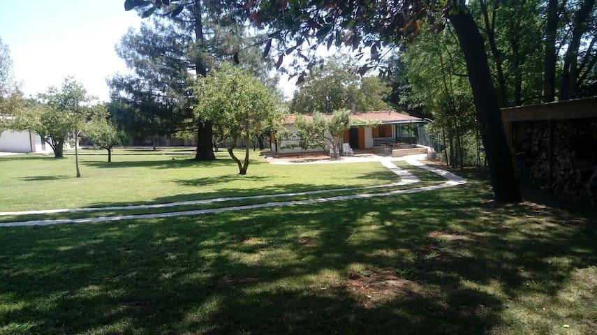 Il giardino degli Etruschi