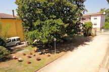 giardino visto dalla camera