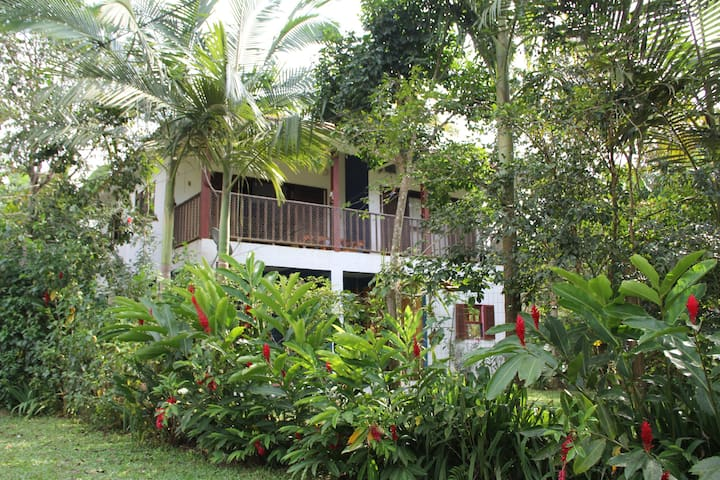 Casa Tamanduá, um lugar feliz!