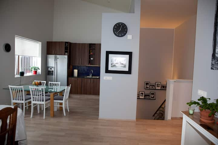 Nice, spacious family home in Reykjavik