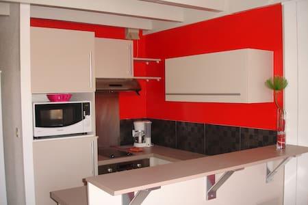 Appart 1 pièce avec mezzanine à 150 M de la plage - Vielle-Saint-Girons