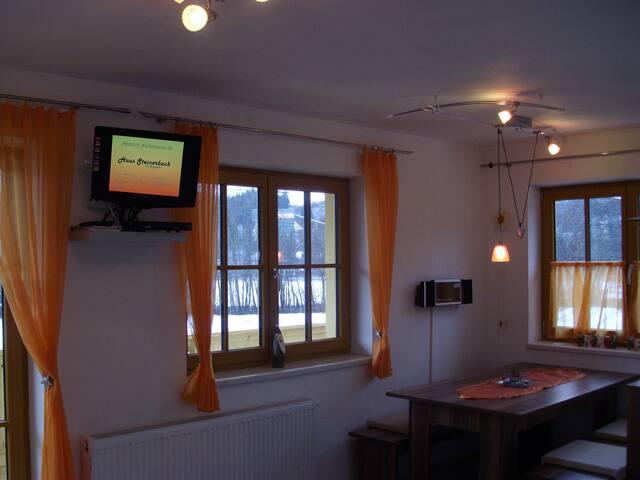 Haus Steinerbach KAISERBLICK - Oberndorf in Tirol - Apartment