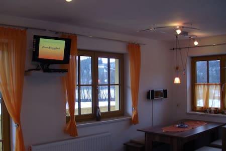 Haus Steinerbach KAISERBLICK - Oberndorf in Tirol