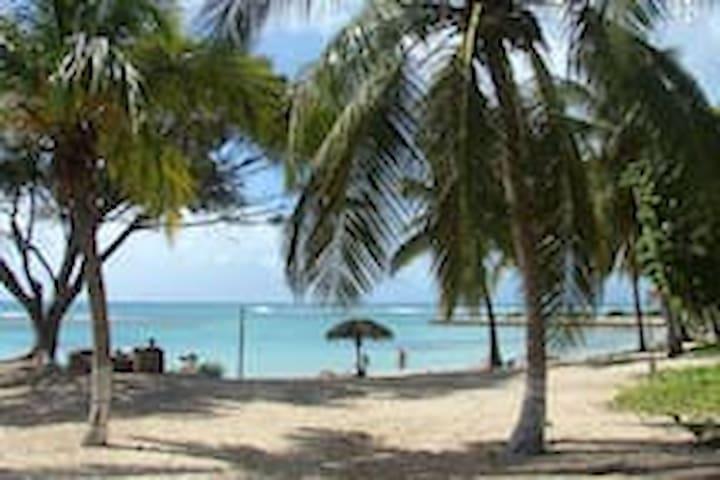 547 Piscine vue ocean &plage de sable blanc- WIFI- - GP - Apartment