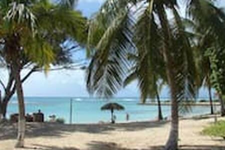 547 Piscine vue ocean &plage de sable blanc- WIFI-