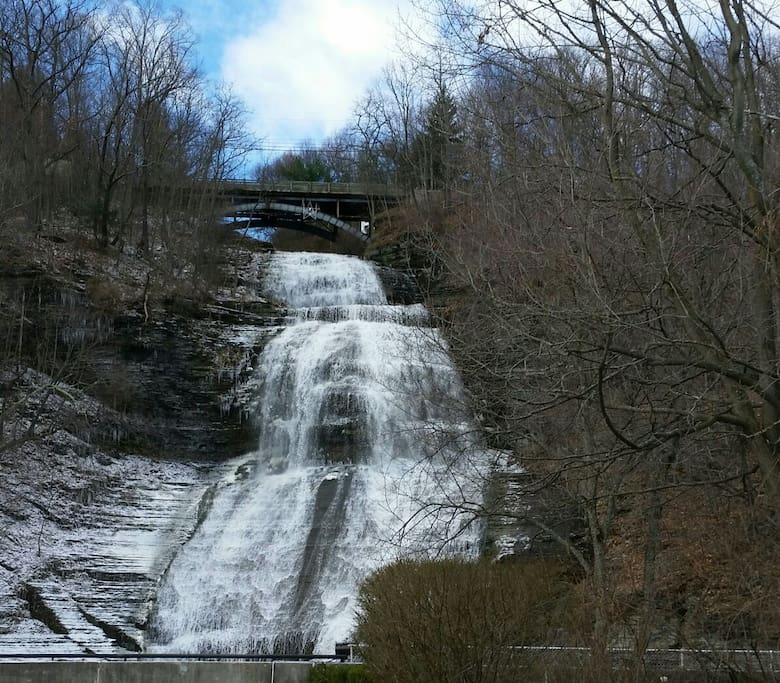 Cascading waterfalls, hiking Watkins Glen State Park, biking Catherine Valley Trail ... Enjoy Nature's best.