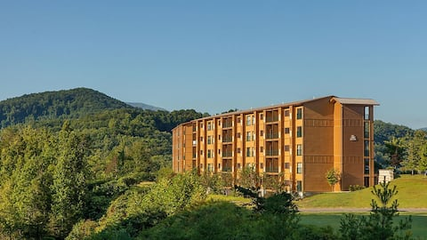 Beautiful 1 Bedroom Apartment in Gatlinburg, TN