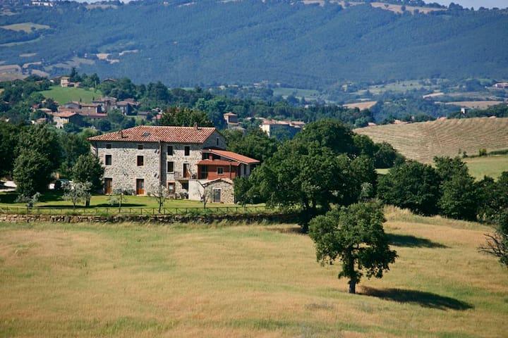 FANTASTICO AGRITURISMO A SATURNIA - Semproniano - Bed & Breakfast