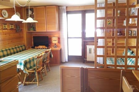 Zonnig ruim appartement ski-in ski-out Cervinia - Breuil-Cervinia - Almhütte